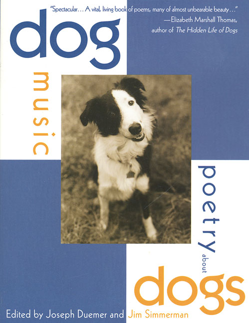 dog music cover